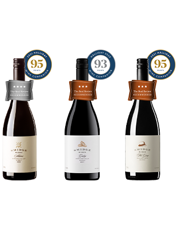 3 Great Shiraz, 3 Iconic Regions!